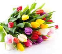 Привітання з 8 березня жіночого колективу ХНДІСЕ